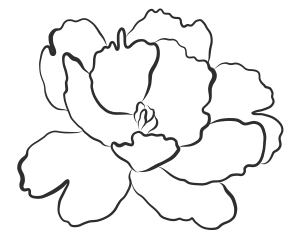 Free PNG Flowers S Clip Art Download - PinClipart